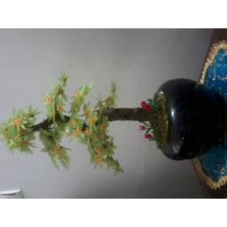 درختچه کریستال