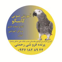 سی دی آموزش صوتی طوطی سانان