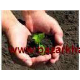 کود ارگانیک پودری مخصوص باغ و باغچه
