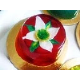 ژله تزریقی گلدار