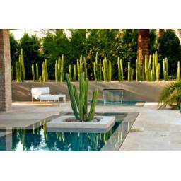 فضای سبز ،محوطه و باغی زیبا مدرن و متفاوت