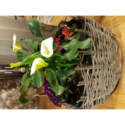 گل کاری تراس و باغچه