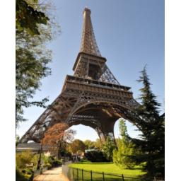 تدریس خصوصی زبان فرانسه (توسط کارشناس ارشد)