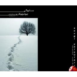 کتاب داستان کوتاه به زبان ترکی (سئوگی یولچولاری)