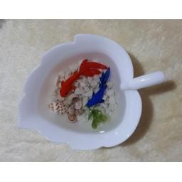 حوضچه ماهی سه بعدی رزینی سفره هفت سین