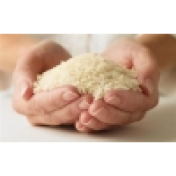برنج آستانه اشرفیه