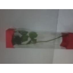 جعبه مخصوص گل نقره