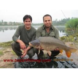 فروش انواع ماهی گرمابی و سرد آبی زنده