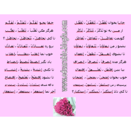 ترجمه کلیه متون عربی