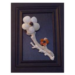 تابلوی گل های صدف مرجانی