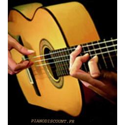 آموزش گیتار فلامنکو ، پاپ-فلامنکو به صورت تخصصی
