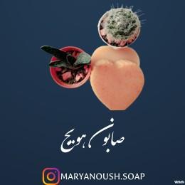 صابون هویج